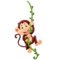 Monkey climbing up vine vector