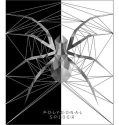 Polygonal spider Geometric vector