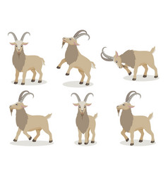set of goat in different poses in flat style vector image