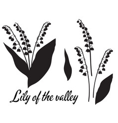 Silhouette lilly valley flower vector