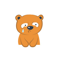 cute bear crying vector image