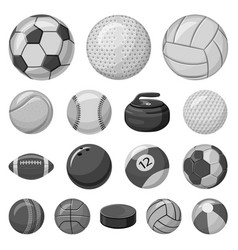 isolated object of sport and ball symbol set of vector image