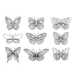 set of butterflies for design element and adult or vector image