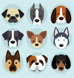 set of cute dogs vector image