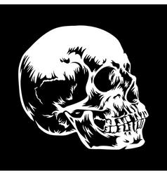 Skull 001 vector image