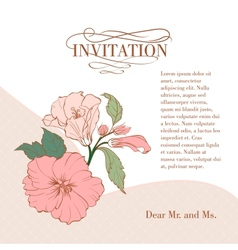 Vintage hibiscus flower on white background vector