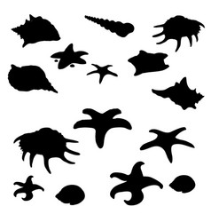 Black shape of molluscs shells and starfish vector