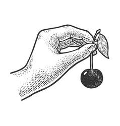 sweet cherry in hand sketch vector image