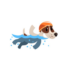 cute jack russell terrier athlete swimming in pool vector image vector image