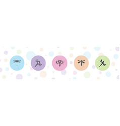 5 dragonfly icons vector