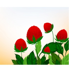 Amaranth flowers cartoon background vector