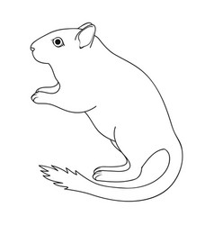 Gray gerbilanimals single icon in outline style vector