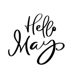 hello may hand drawn calligraphy text and brush vector image