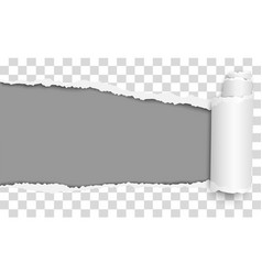 Oblong torn hole from left to right vector