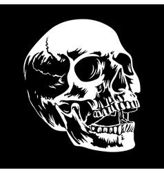 Skull 002 vector