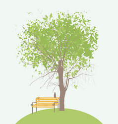 spring banner with green tree bench and cat vector image