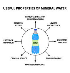 useful properties of mineral water infographics vector image