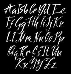 hand drawn font modern brush lettering elegant vector image