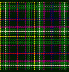 emerald green plaid vector image