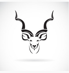 Greater kudu head design on white background wild vector