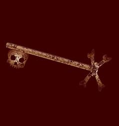 very old skeleton key vector image