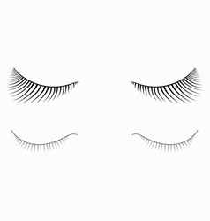 logo of eyelashes stylized hair abstract lines vector image