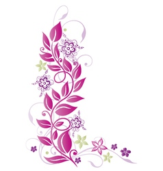Floral elements ornament vector image vector image
