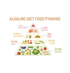 Alkaline diet food pyramid vector