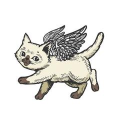 Angel flying kitten color sketch engraving vector