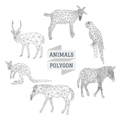 Animals polygon outline vector