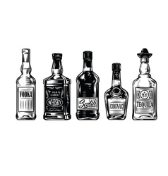 Bottles of alcohol icon vector