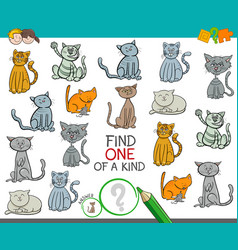 find one of a kind picture with cats vector image