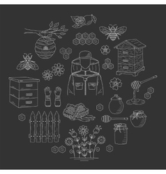 Honey collection with beekeeping elements vector