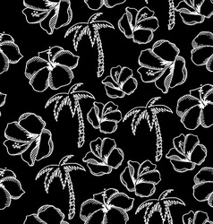 Seamless pattern background tropical summer vector