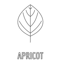 Apricot leaf icon outline style vector