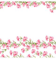 beautiful alstroemeria vector image