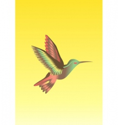 Calibri bird vector image