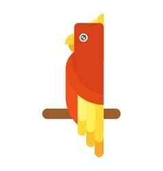 Cartoon parrot isolated vector