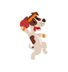 Cute jack russell terrier athlete playing with vector