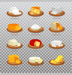 Isolated cheese food like parmesan and mozzarella vector