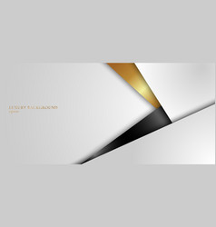 Abstract background elegant white black and gold vector