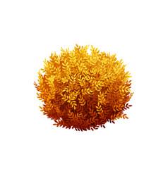 Autumn realistic bush vector