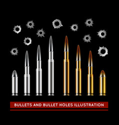 Bullets and bullet holes vector