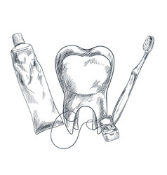 Hand drawn molar toothpaste toothbrush and floss vector