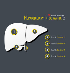 hepatobiliary infographic flat design vector image