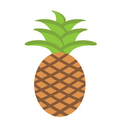 Pineapple flat icon fruit and tropical vector