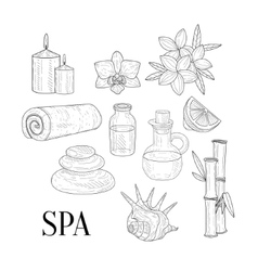 spa assosiated isolated hand drawn realistic vector image