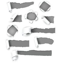 gray paper vector image vector image