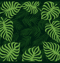 Border frame tropical palm leaf 10eps vector