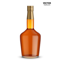 cognac whiskey or brandy bottle isolated vector image vector image